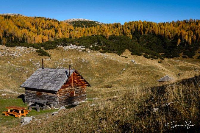 DSC_7313 L'autunno ai Campilussi