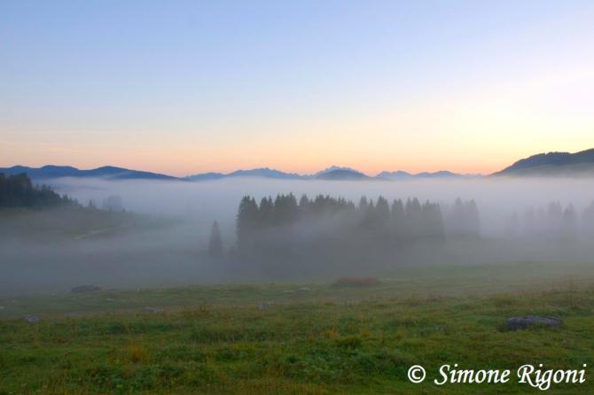 _DSC5429 Risveglio tra la nebbia