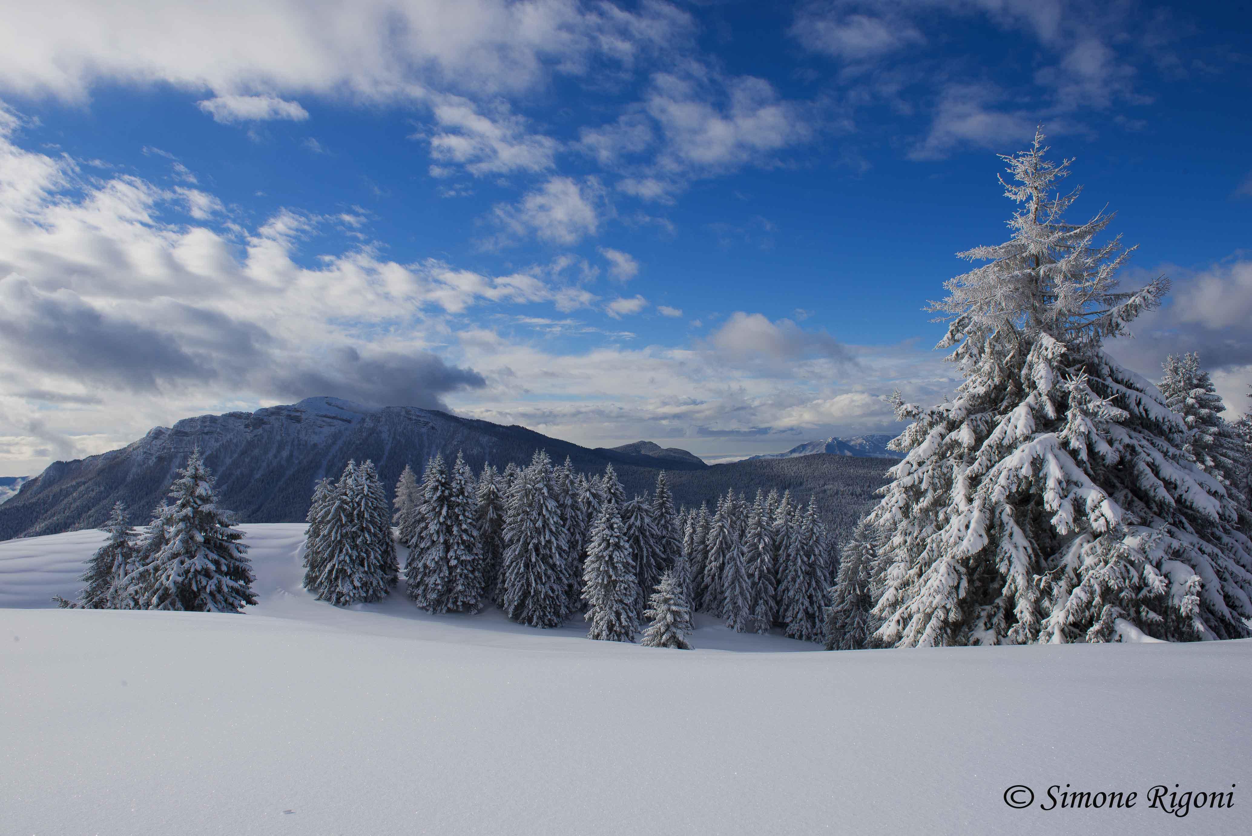 DSC_2957 Monte Verena