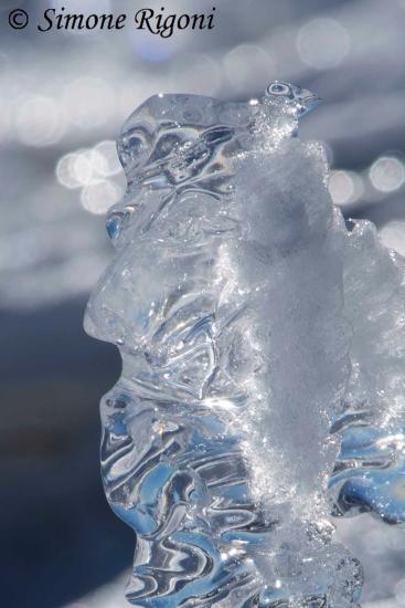 _DSC1669 Decorazione di ghiaccio