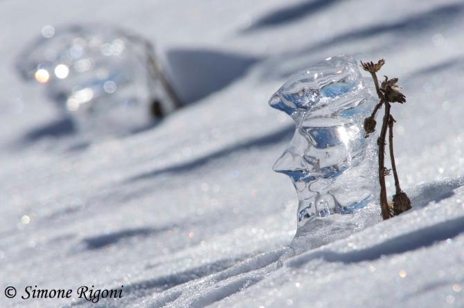 _DSC1708 Soldato di ghiaccio