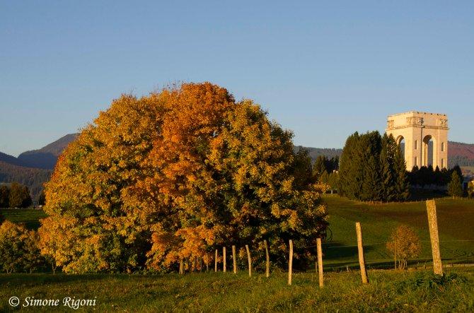 _DSC8745 Si sta come d'autunno sugli alberi le foglie. G.Ungaretti